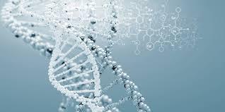 DNA-Image-2-L